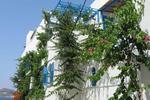 GALINI, Hotel, Agios Georgios Beach, Chora, Naxos, Cyclades