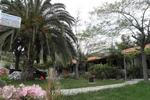 ΜΑΡΙΑ ΒΑΦΕΙΔΟΥ, Ενοικιαζόμενα Δωμάτια, Λιναράκι, Συκιά, Χαλκιδικής